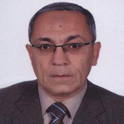 Prof. Baher A. M. Effat